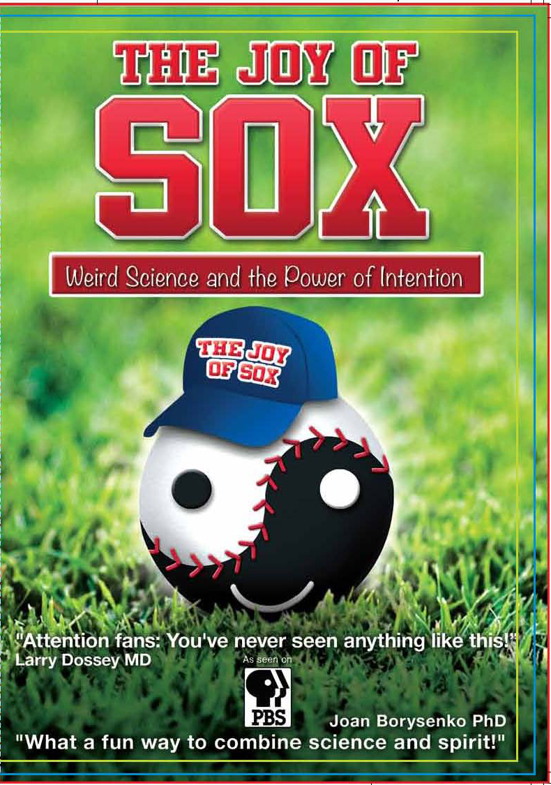 The Joy of Sox Movie DVD Movie Poster